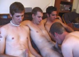 Gay and Straight Sex Orgy